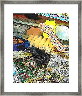 Crow In Rehab Framed Print by YoMamaBird Rhonda