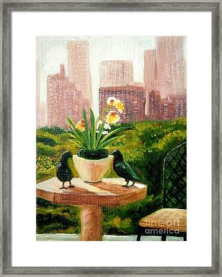 Crow Talk Framed Print by Pauline Ross
