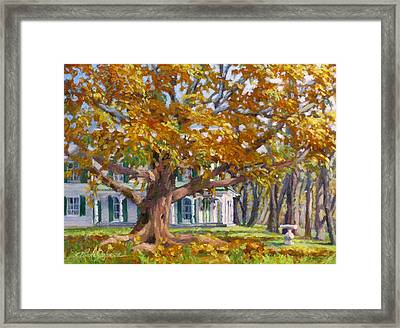 Crown Of Gold Framed Print by L Diane Johnson
