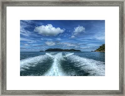 Cruising Framed Print by Adrian Evans