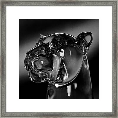 Crystal Cougar Head IIi Framed Print by David Patterson