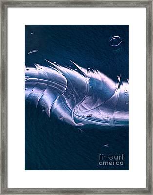 Crystalline Entity Panel 2 Framed Print by Peter Piatt