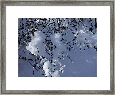 Crytalize Snow Shadows Framed Print