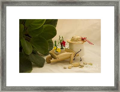 Cultivating Confection Framed Print by Heather Applegate