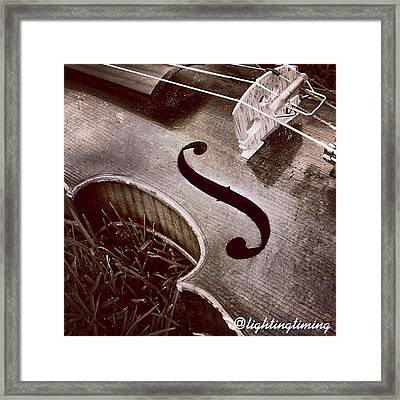 Culture & Texture #violin #classical Framed Print