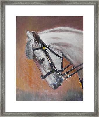 Cumhaill Framed Print by Tomas OMaoldomhnaigh