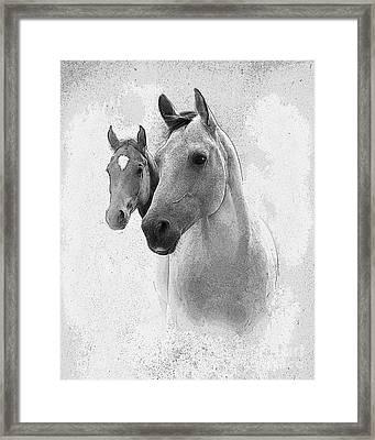 Curiosity Framed Print by Betty LaRue