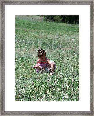 Curiosity Framed Print by Jack Norton