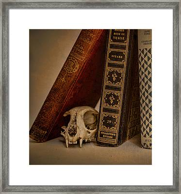 Curiosity Killed The Cat Framed Print by Heather Applegate