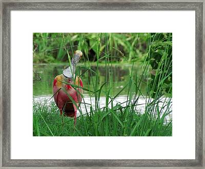 Curious Roseate Spoonbill Framed Print by Betty Berard