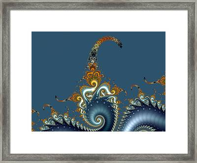 Curly Curly Framed Print