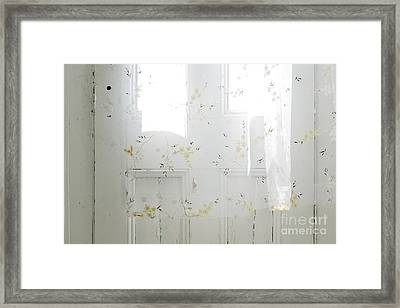 Curtain Framed Print by John Greim