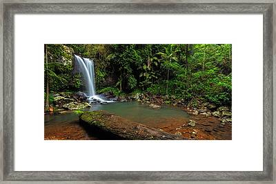 Curtis Falls - Mt Tamborine Framed Print by Mark Lucey