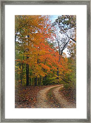 Curve In Fall Framed Print by Marty Koch