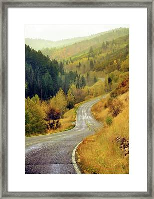 Curve Mountain Road With Autumn Trees Framed Print