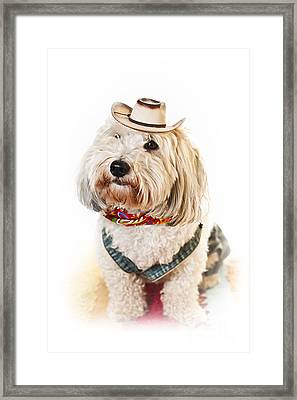 Cute Dog In Halloween Cowboy Costume Framed Print