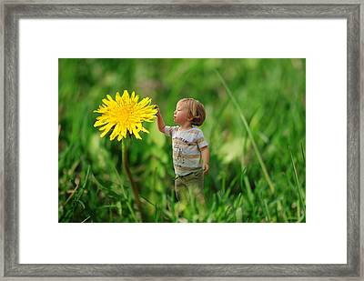Cute Tiny Boy Playing In The Grass Framed Print by Jaroslaw Grudzinski