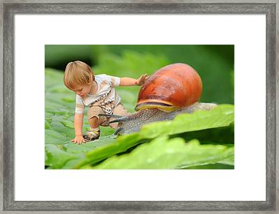 Cute Tiny Boy Playing With A Snail Framed Print by Jaroslaw Grudzinski