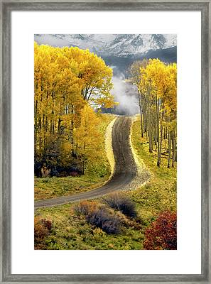 Cutting Through The Aspens Framed Print by Dave Mills