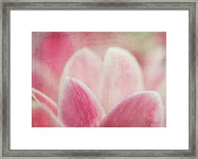 Cyclamen Framed Print