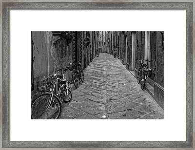 Cycle Lane Framed Print by Michael Avory