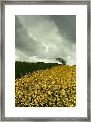 Cymylau Tywyll Framed Print by Jacqui Collett
