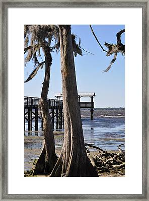 Cypress And Dock At Low Tide Framed Print by Tiffney Heaning