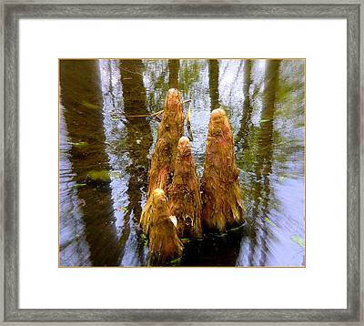 Cypress Family Of Monks Framed Print by Mindy Newman