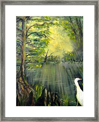 Cypress Morning Framed Print by Christy Usilton