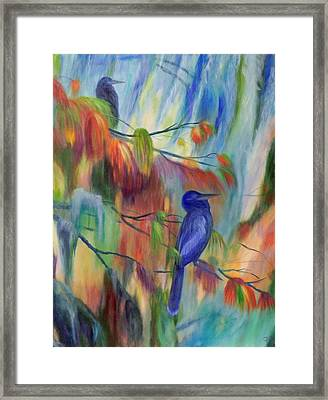 Cypress Moss And Anhingas Framed Print by Delores Haberkorn