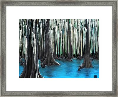 Cypress Spring Framed Print by Holly Donohoe