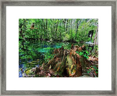 Cypress Stump At Buford Spring Framed Print by Barbara Bowen