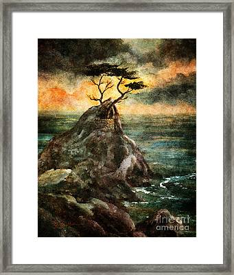 Cypress Tree In Storm Framed Print by Laura Iverson