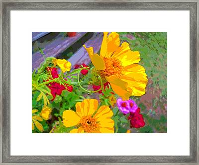 Cypress Vine And Flowers By Porch Steps Framed Print by Padre Art