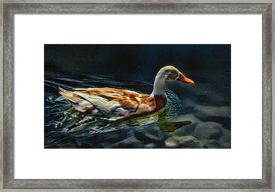 Dabbling In Blue Waters Framed Print by Bill Tiepelman