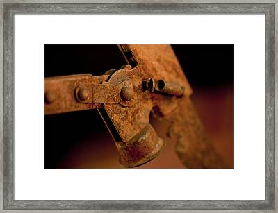 Daddy's Beer Capper Framed Print by Wilma  Birdwell