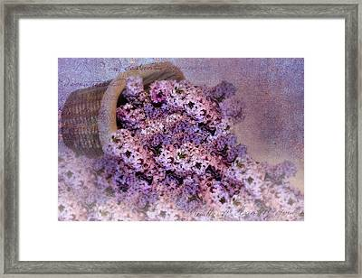 Daddy's Lilacs Series II Framed Print by Kathy Jennings