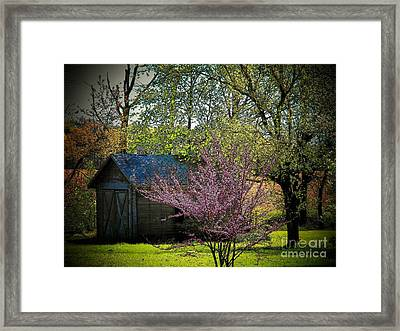 Daddys Old Shed In The Spring Framed Print by Joyce Kimble Smith