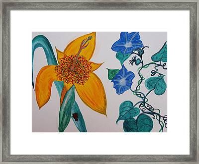 Daffyclem Framed Print by Joy Sparks