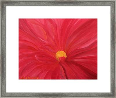 Dahlia Macro Framed Print by Janet Greer Sammons