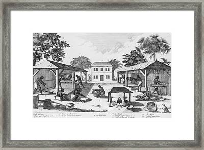 Daily Life For Enslaved Africans Framed Print by Everett