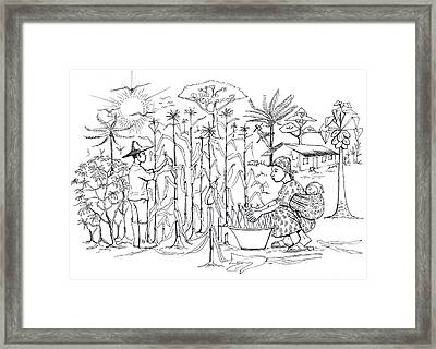 Daily Life In South And Center Cameroon 01 Framed Print