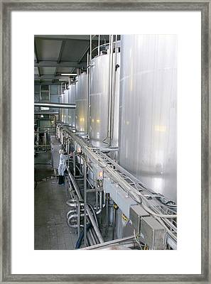 Dairy Industry Framed Print