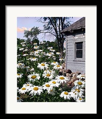 Garden Shen Framed Prints