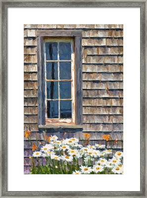 Daisies And Daylilies Framed Print by Verena Matthew