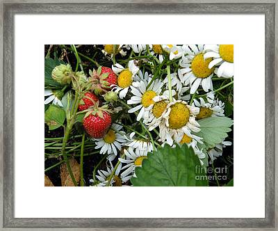 Framed Print featuring the digital art Daisies And Strawberries by Vicky Tarcau
