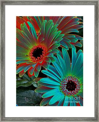 Daisies From Another Dimension Framed Print by Rory Sagner