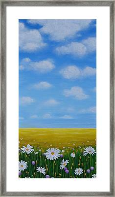 Daisies Framed Print by Holly Donohoe