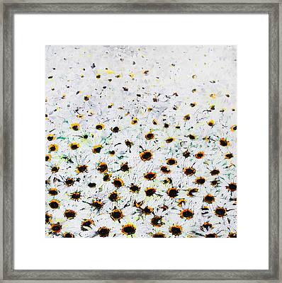 Daisies Framed Print by Lolita Bronzini