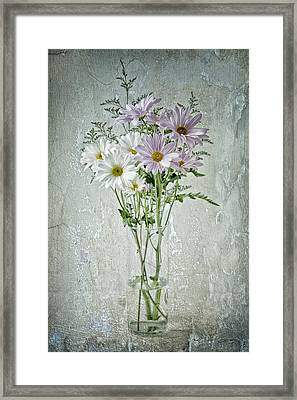 Framed Print featuring the photograph Daisy by James Bethanis